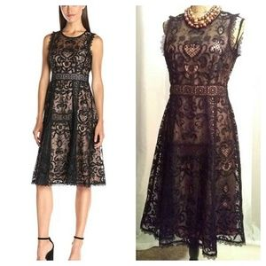 NWT Nanette Lepore lace blk dress sz 6 illusion